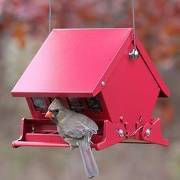 Audubon 23804 Absolute II Squirrel-Proof Hopper Bird Feeder,