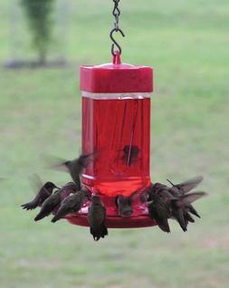 First Nature 3055 32-ounce Hummingbird Bird Feeder