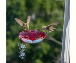 Droll Yankees 344550 Ruby Sipper Window Hummingbird Feeder