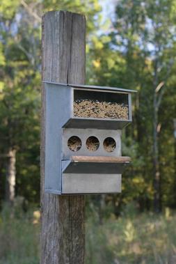 Backyard Buddies Birdfeeder