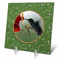 3dRose Beverly Turner Bird Photography - Hummingbird at Feed
