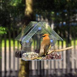 clear glass window viewing font b bird