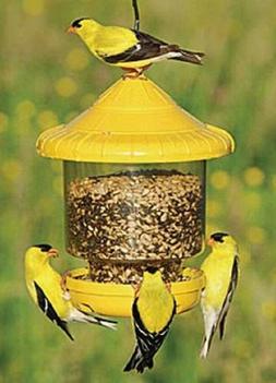 Songbird Essentials CLINGERS ONLY BIRD FEEDER , FREE USA SHI