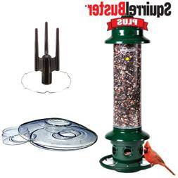 Complete Brome Squirrel Buster Plus Bird Feeder & Accessory