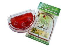 GC - Hummingbird Set - Perch Swing & Jewelbox Window Feeder