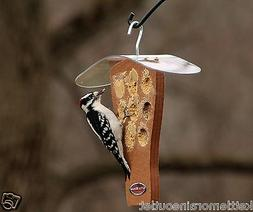Kettle Moraine Recycled Milk Jug Peanut Butter Woodpecker Wi