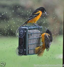 Kettle Moraine Window Mount Suet Cake Wild Bird Feeder #8315