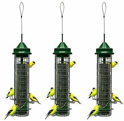 "Squirrel Buster Finch 5.3""x5.3""x32""  Wild Bird Feeder with 4"