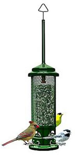 Brome 1082 Squirrel Buster Legacy Wild Bird Feeder with 4 Me