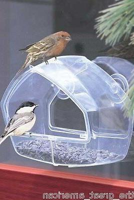 348 window bird feeder holds any type