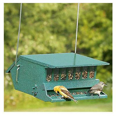 Squirrel Feeder, Lbs