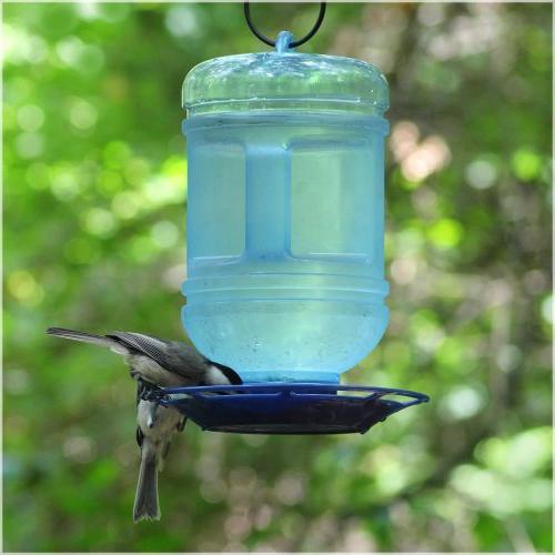 Perky-Pet 780 Water Bird Waterer