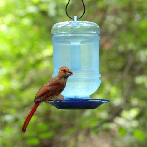 Perky-Pet Water Bird