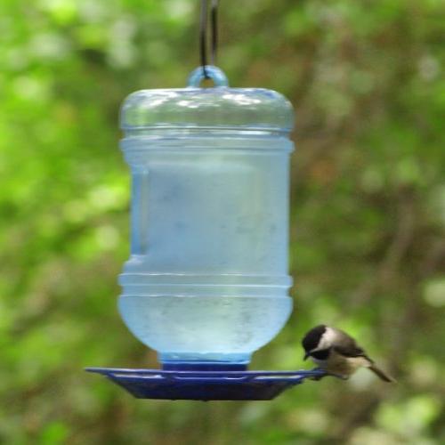 Perky-Pet Cooler Bird Waterer
