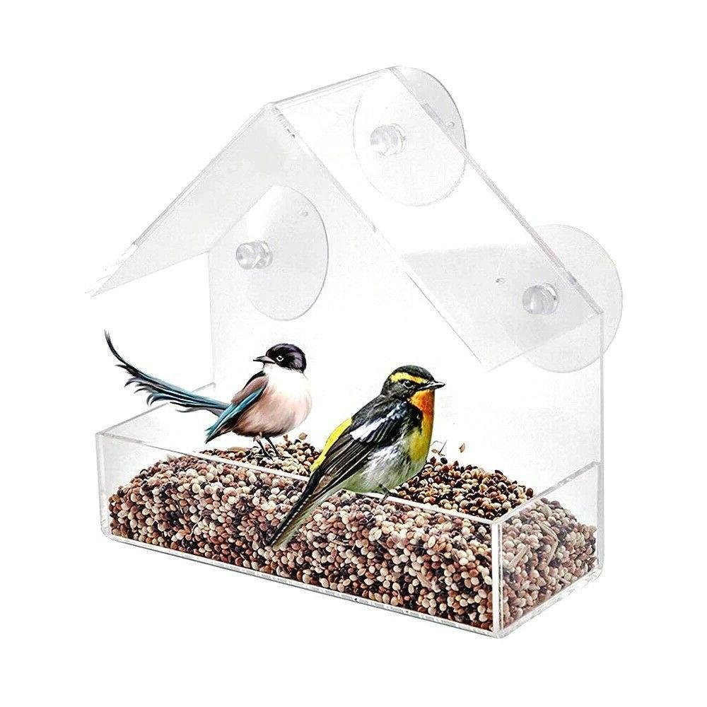 Acrylic Window Viewing Bird Suction