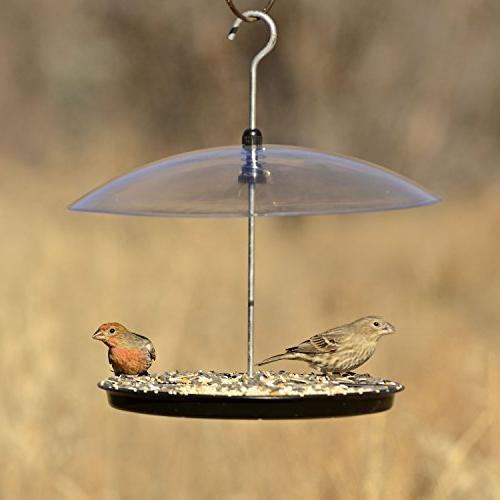 Perky-Pet Adjustable Bird Feeder
