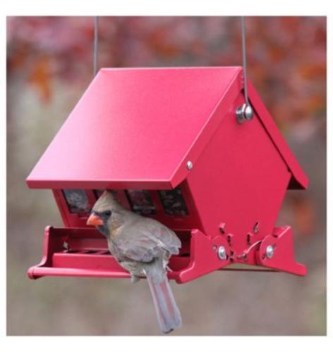 Audubon 7458 4 Lb Capacity Squirrel Proof Bird Feeder