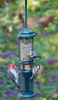 Brome Bird Care BD1052 Squirrel Buster Peanut + Set of 1