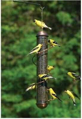 """BIRD FEEDER FINCH 17"""" Copper Spiral Thistle Feeder - SQUIRRE"""