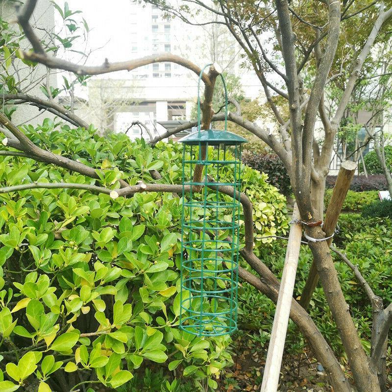 Bird Stumper Proof Seed Outdoor Garden