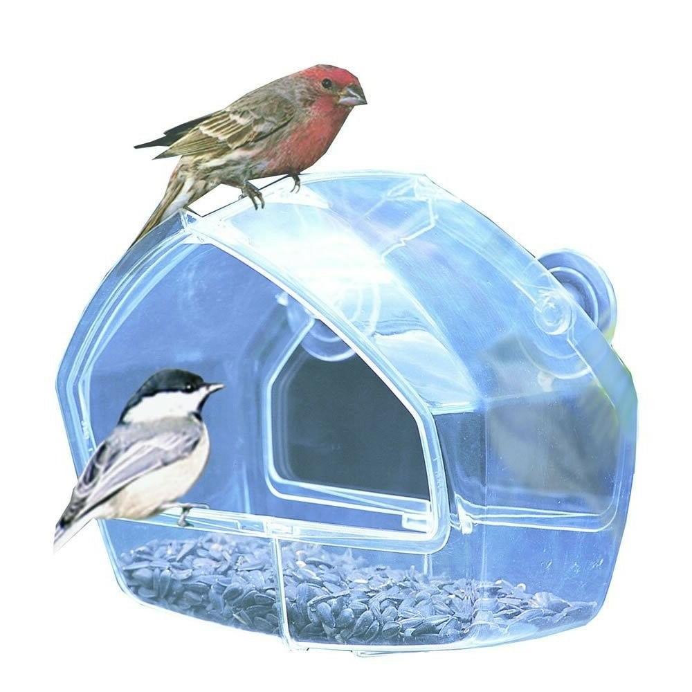 bird feeder house window