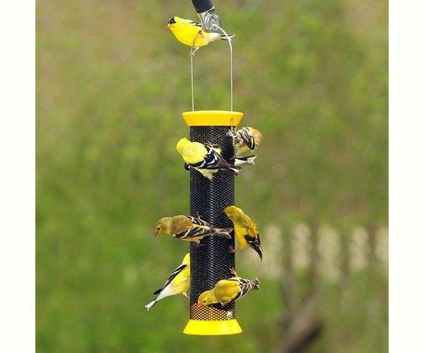 Metal Finch Sock Bird Feeder Yellow DYCJM13FSY Inc Droll Yankees