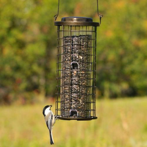 Bird Feeder Hanging Feeding Ports Proof Tan 3-Lb