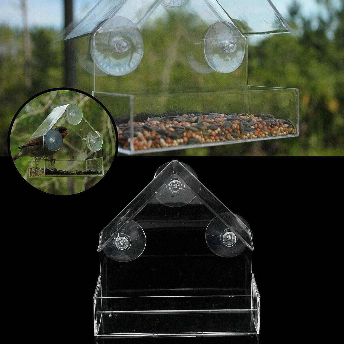 Bird Window Acrylic Clear Mount