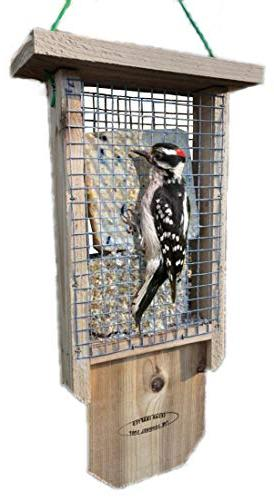 The Cedar Double Suet Feeder with and Premium