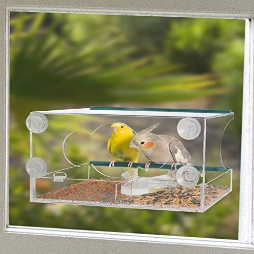 Birdious Deluxe Window Feeder with Enjoy Clear View Birds. Birdfeeder for Outdoors Mounted Gift Idea