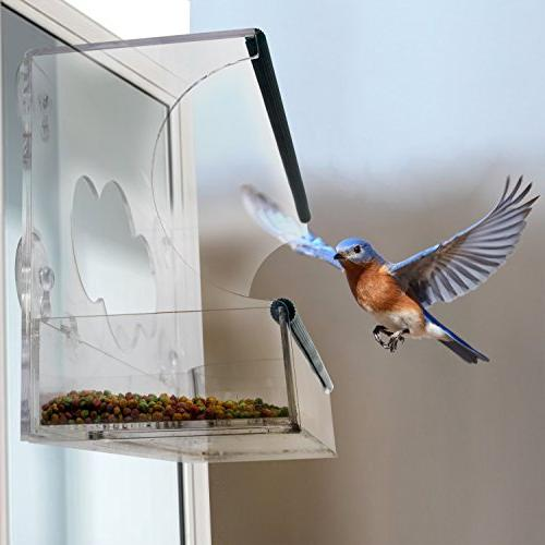 Birdious Deluxe Bird Feeder with Enjoy Birds. Proof Birdfeeder on Glass. Best Gift Idea