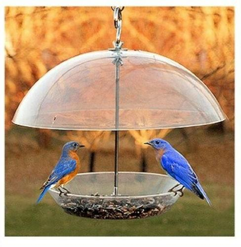 dome seed feeder