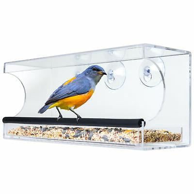extra wide acrylic window bird
