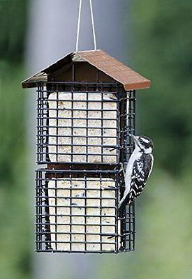 Suet Bird Feeder with Metal Suet