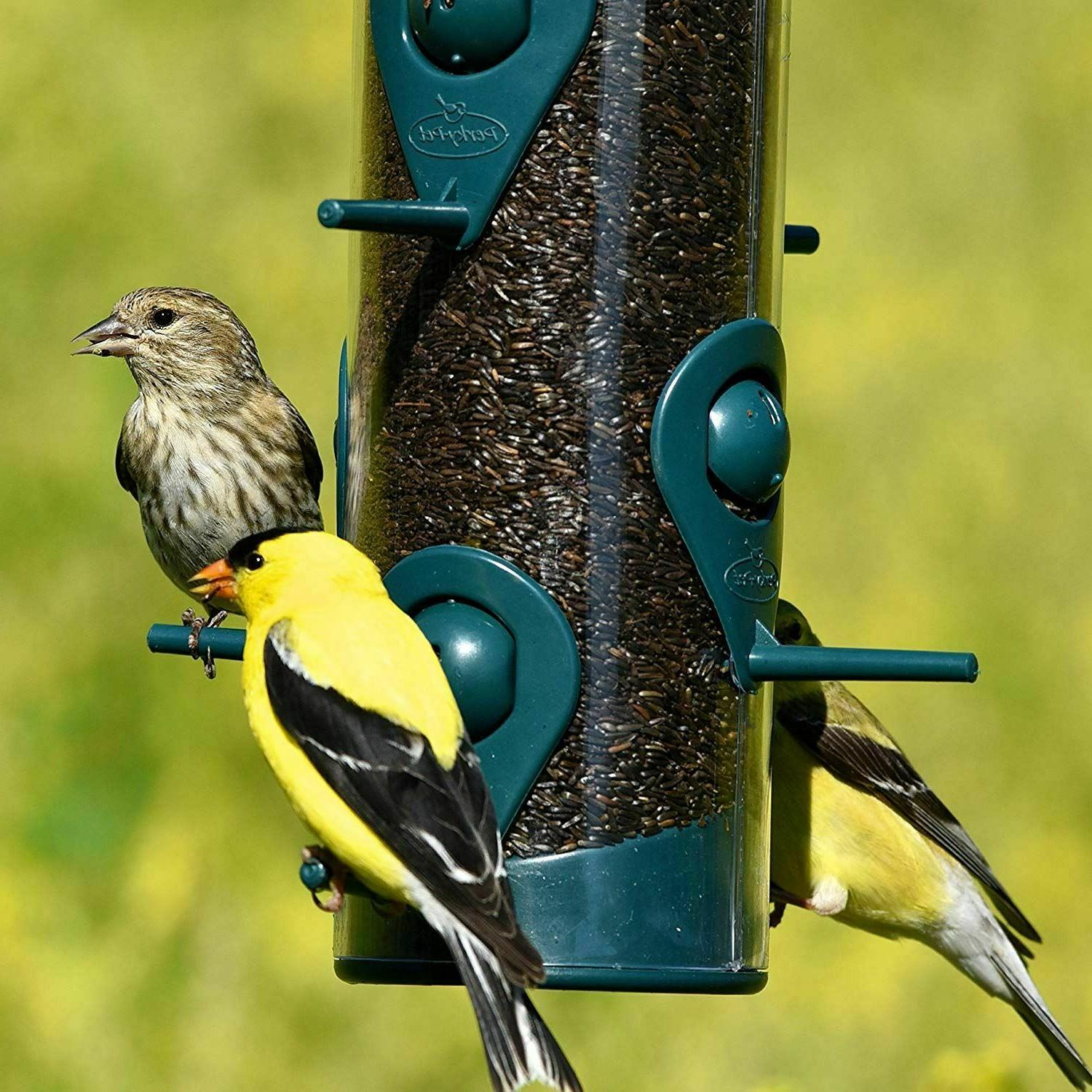 Garden Proof Wild Bird Seed Outdoor Wildlife