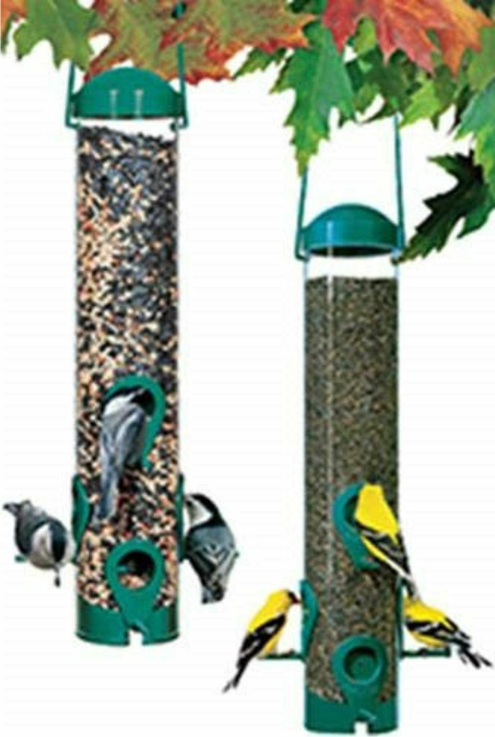 Garden Squirrel Proof Wild Bird Seed Outdoor