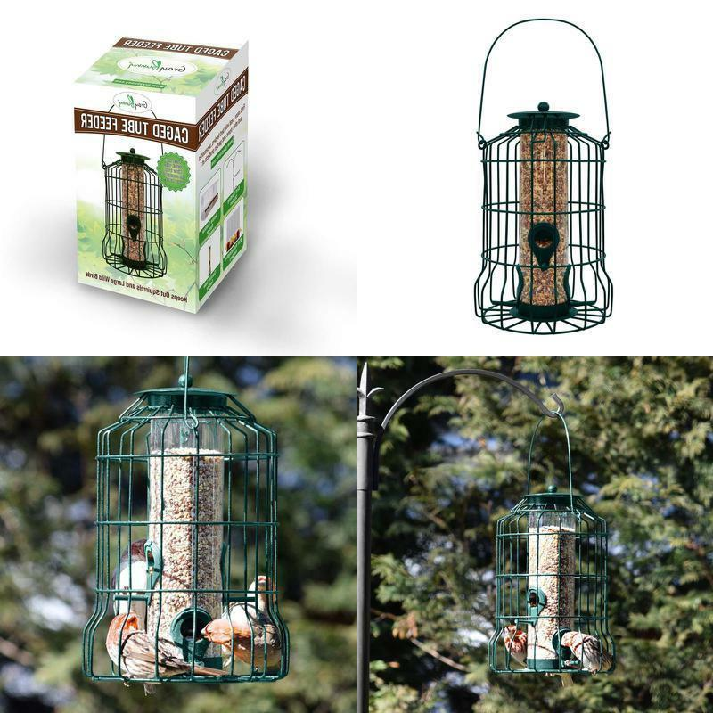 Graybunny Gb-6860 Caged Tube Feeder, Squirrel Proof Wild Bir