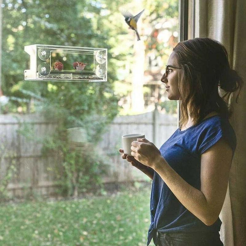 Glass Outdoor Bird