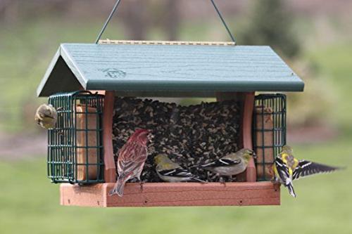 Woodlink Large Premier Bird Feeder Suet GGPRO2