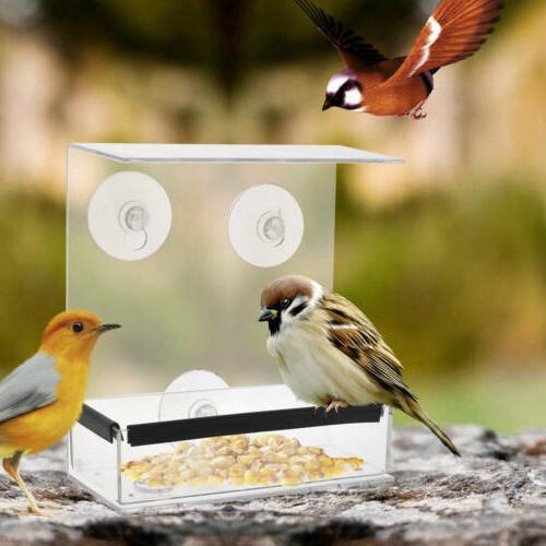 hanger square ceiling window bird feeder adsorption