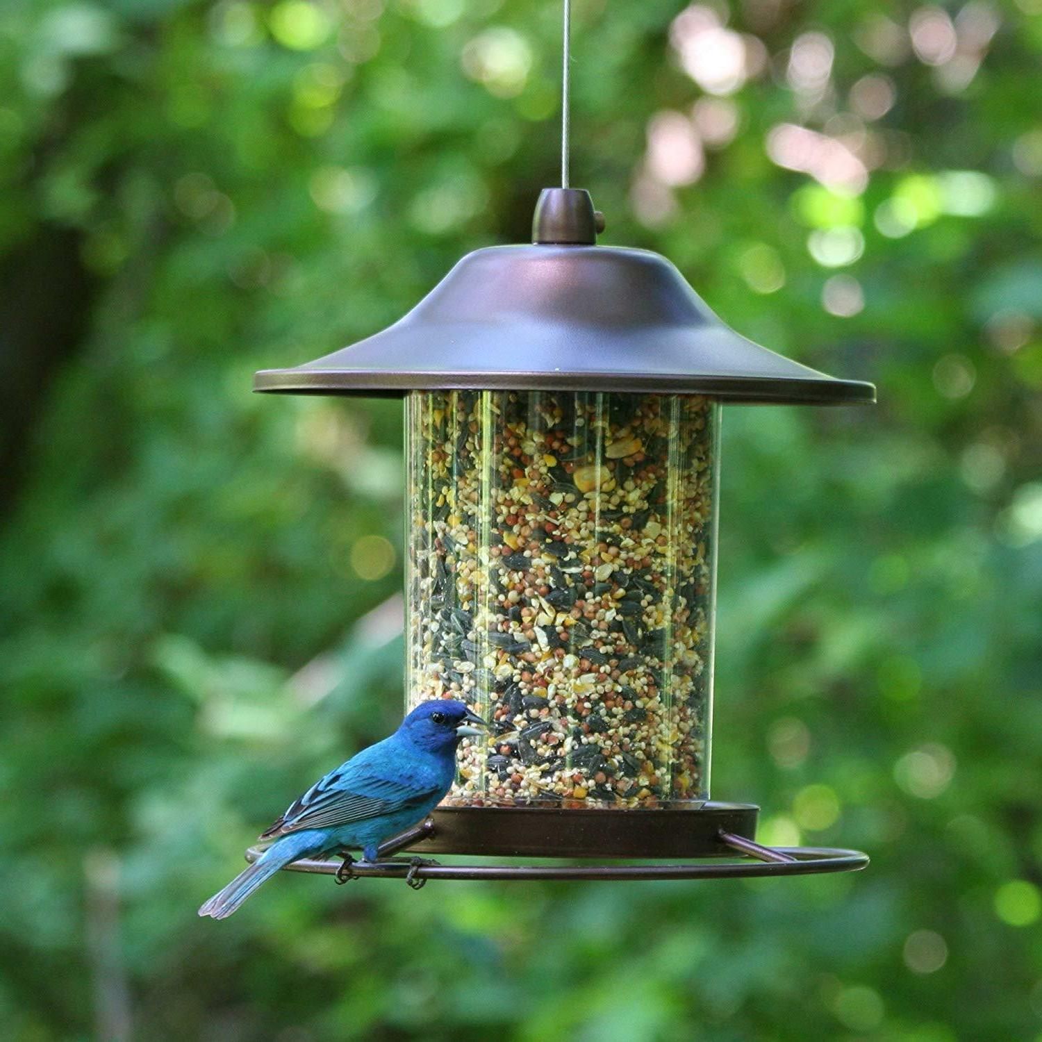 hanging bird seed feeder panorama pet copper