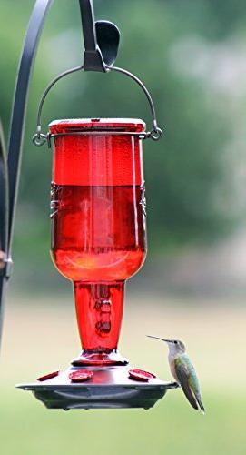 More Birds Hummingbird Feeder, Glass Hummingbird Feeding Stations, 23-Ounce Nectar Capacity, Vintage Jug