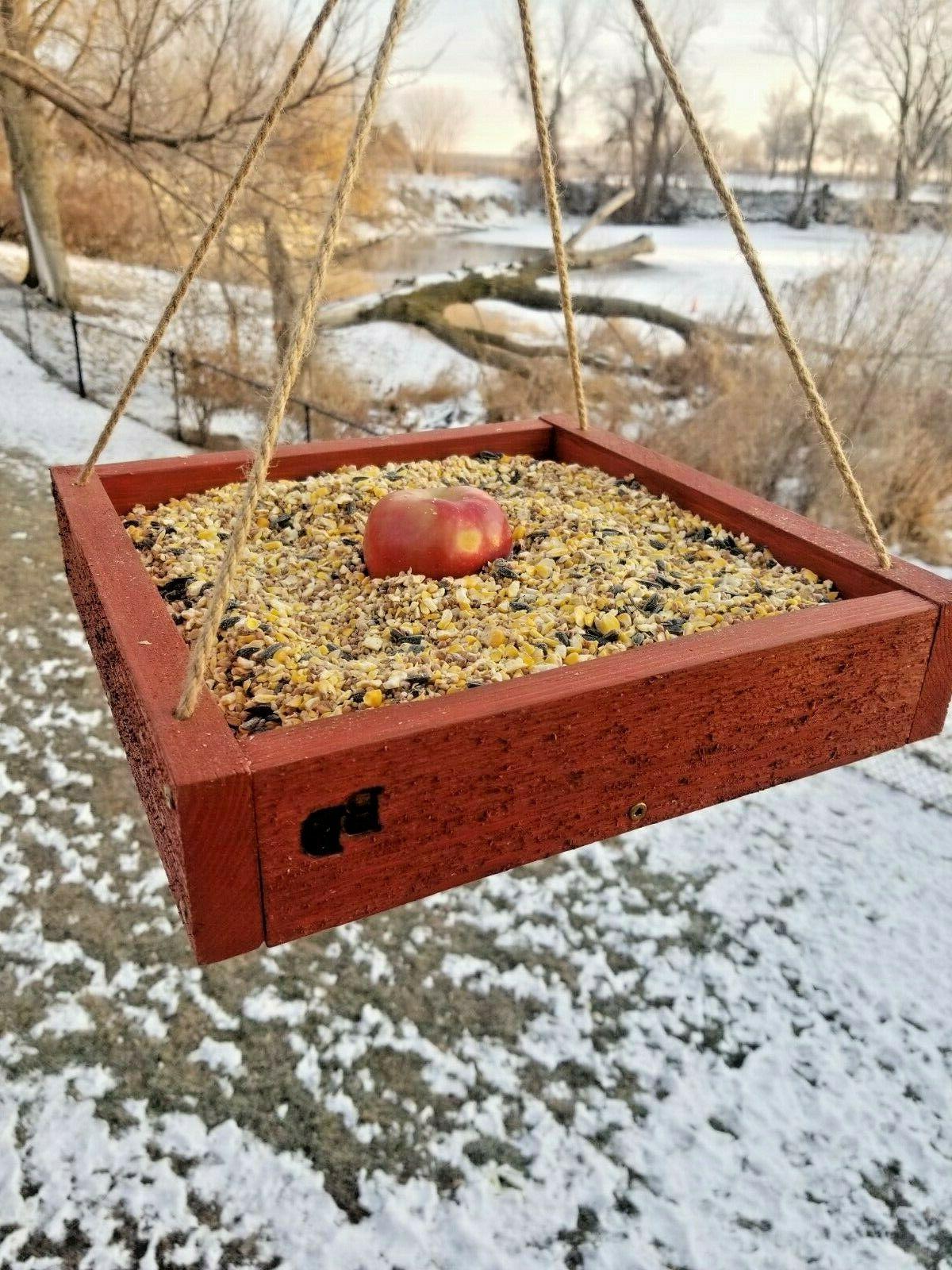 Bird or Squirrel Platform in USA