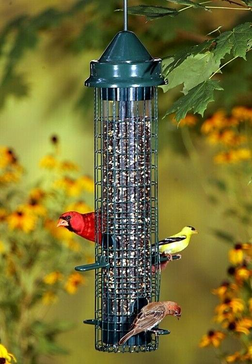 NEW Brome Squirrel Buster Classic Squirrel Proof Bird