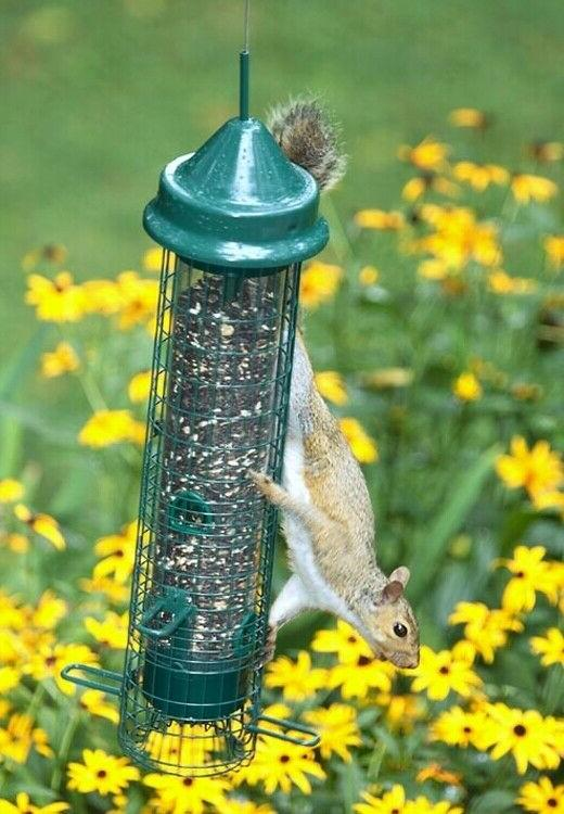NEW Brome Buster Classic Squirrel Proof Bird Feeder