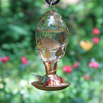 Perky-Pet Bird Deco to Clean Glass Feeder Copper