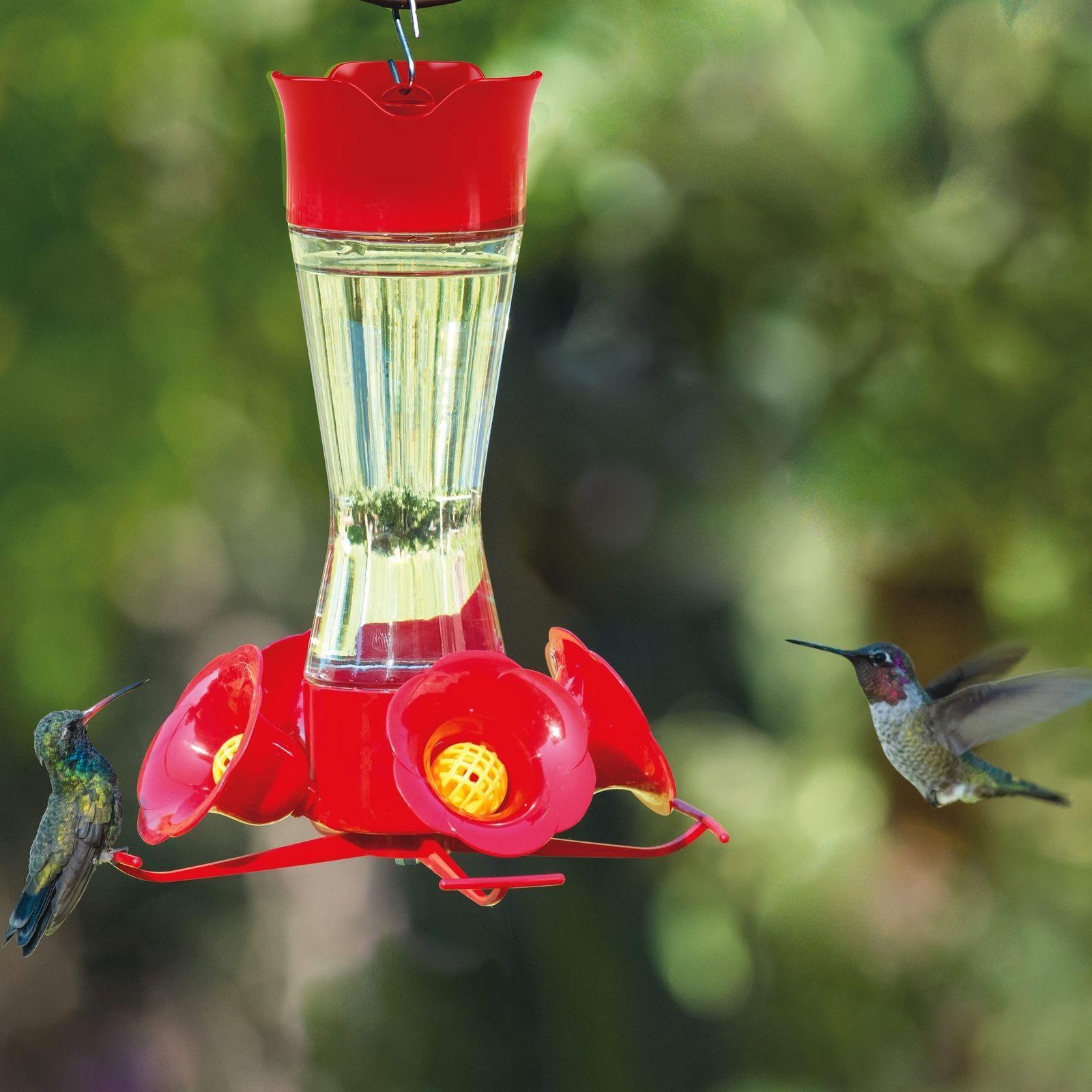 Perky-Pet Clear 203CPBN Pinch Waist Glass Hummingbird Feeder