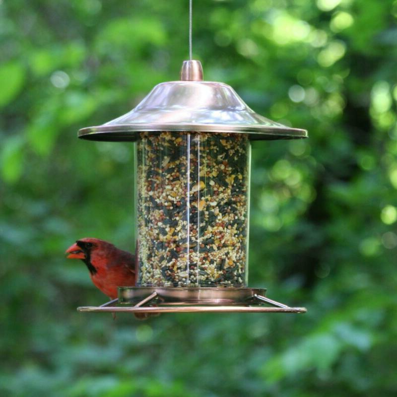 Perky Copper Bird Feeder Circular Dispenser Transparent