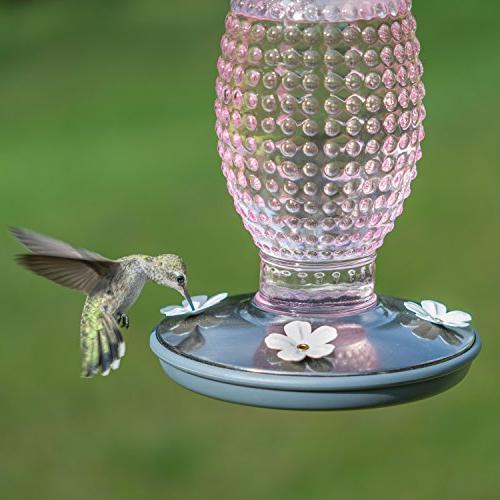 Perky Pet 8131-2 Hobnail Vintage Glass Hummingbird Feeder