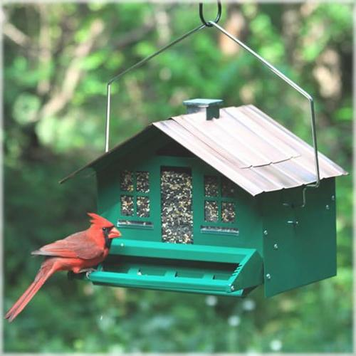 Perky Be Gone Home Style Feeder